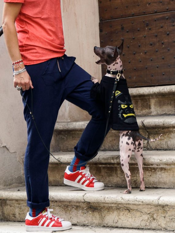 abbigliamento-cani-vendita-online-t-shirt-demone-oni