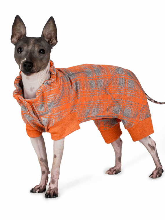 abbigliamento cani chuki yuki